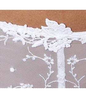 PASSIONATA Culotte Donna Con Dettagli In Tulle Art.4064